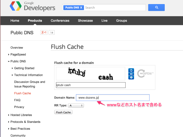 Flush_Cache_-_Public_DNS_—_Google_Developers-4