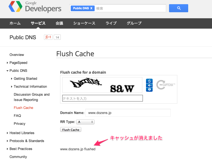 Flush_Cache_-_Public_DNS_—_Google_Developers-5